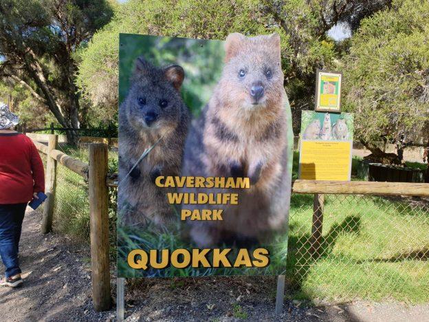 凱維森野生動物園(Caversham Wildlife Park)